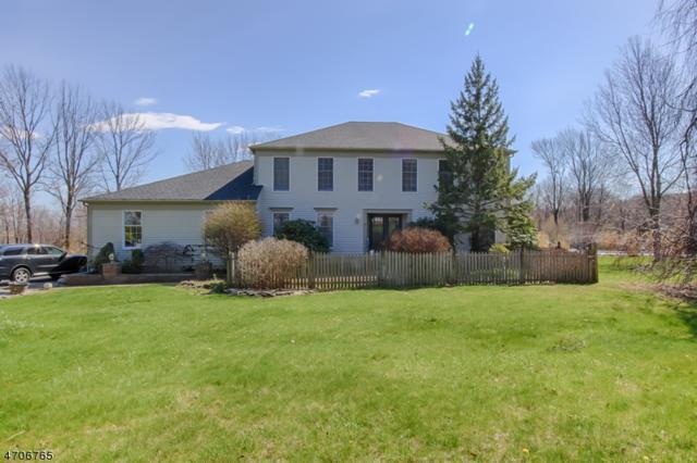12 Victoria Dr, Mount Olive Twp., NJ 07836 (MLS #3381070) :: The Dekanski Home Selling Team