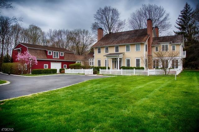 3 Prudence Ln, Mendham Twp., NJ 07960 (MLS #3381113) :: The Dekanski Home Selling Team