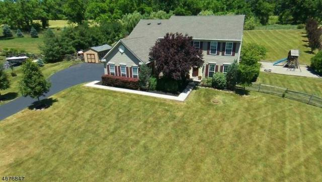 17 Rolins Mill Rd, Raritan Twp., NJ 08822 (MLS #3381123) :: The Dekanski Home Selling Team