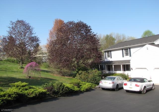 225 Mount Joy Rd, Holland Twp., NJ 08848 (MLS #3381228) :: The Dekanski Home Selling Team