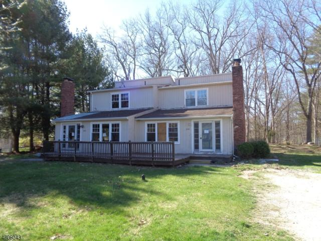 319 Wagon Wheel Rd, Montague Twp., NJ 07827 (MLS #3381259) :: The Dekanski Home Selling Team