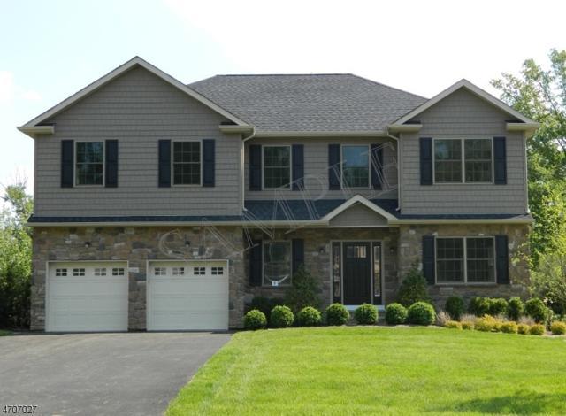 67 Haggerty Dr, West Orange Twp., NJ 07052 (MLS #3381333) :: The Dekanski Home Selling Team