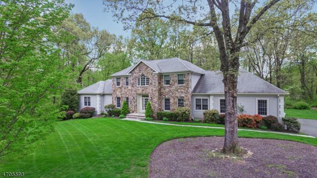 9 Logan Ct, Mendham Twp., NJ 07945 (MLS #3381401) :: The Dekanski Home Selling Team