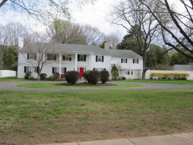 247 Piedmont Dr, Bound Brook Boro, NJ 08805 (MLS #3381509) :: The Dekanski Home Selling Team