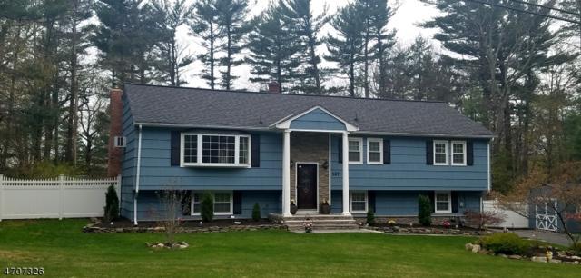 127 Vreeland Rd, West Milford Twp., NJ 07480 (MLS #3381598) :: The Dekanski Home Selling Team