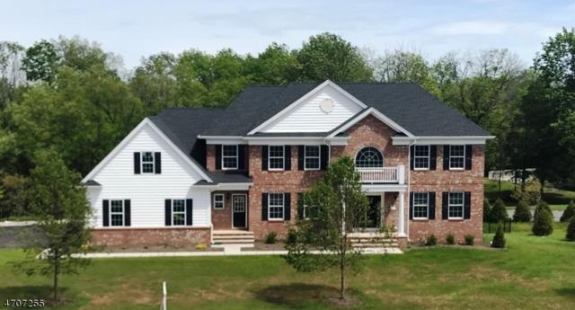 17 Jamieson Way, Hillsborough Twp., NJ 08844 (MLS #3381881) :: The Dekanski Home Selling Team