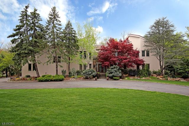 17 Canoe Brook Dr, Livingston Twp., NJ 07039 (MLS #3381958) :: The Dekanski Home Selling Team