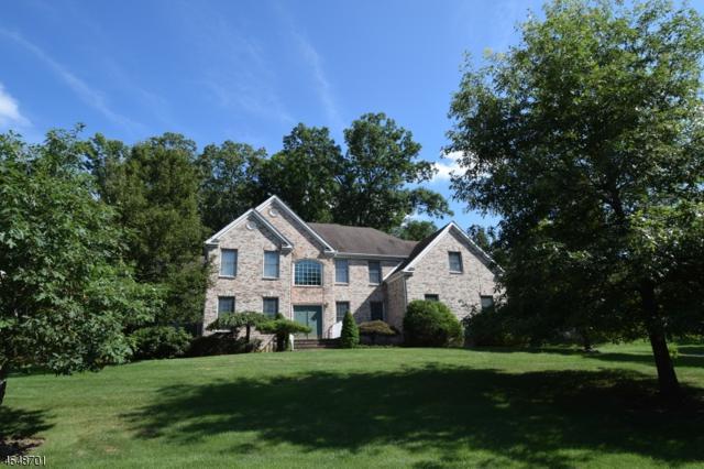 5 Ridge Rd, Green Brook Twp., NJ 08812 (MLS #3381972) :: The Dekanski Home Selling Team
