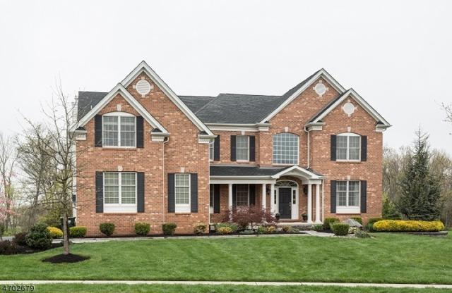 33 Boehm Way, Hillsborough Twp., NJ 08844 (MLS #3382152) :: The Dekanski Home Selling Team