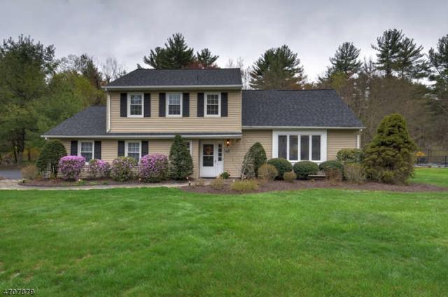 17 King Arthur Ct, West Milford Twp., NJ 07480 (MLS #3382153) :: The Dekanski Home Selling Team