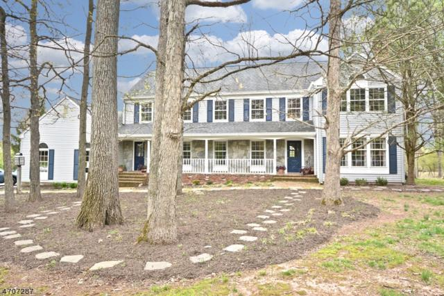 6 Flintlock Rd, Readington Twp., NJ 08822 (MLS #3382342) :: The Dekanski Home Selling Team