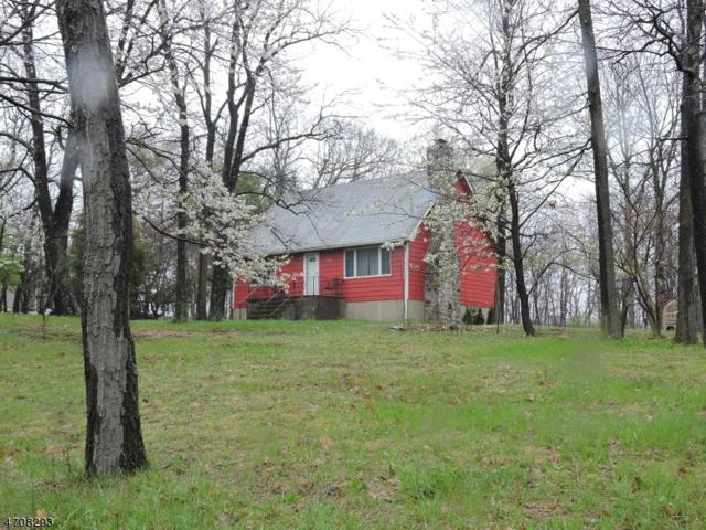 758 Canistear Rd, Vernon Twp., NJ 07422 (MLS #3382439) :: The Dekanski Home Selling Team