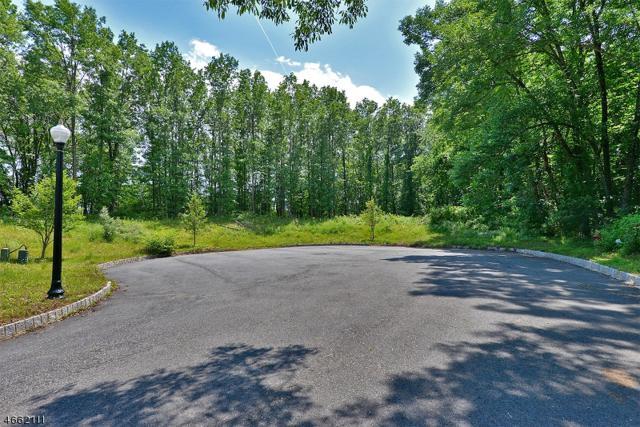 23 Kokora Ave, Montville Twp., NJ 07045 (MLS #3382826) :: The Dekanski Home Selling Team