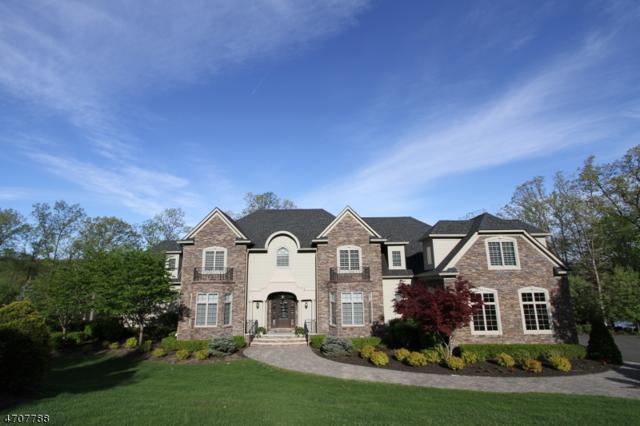 19 Windemere Way, Sparta Twp., NJ 07871 (MLS #3382942) :: The Dekanski Home Selling Team