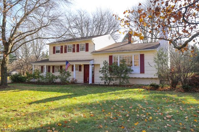 61 Fairview Dr E, Bernards Twp., NJ 07920 (MLS #3383361) :: The Dekanski Home Selling Team