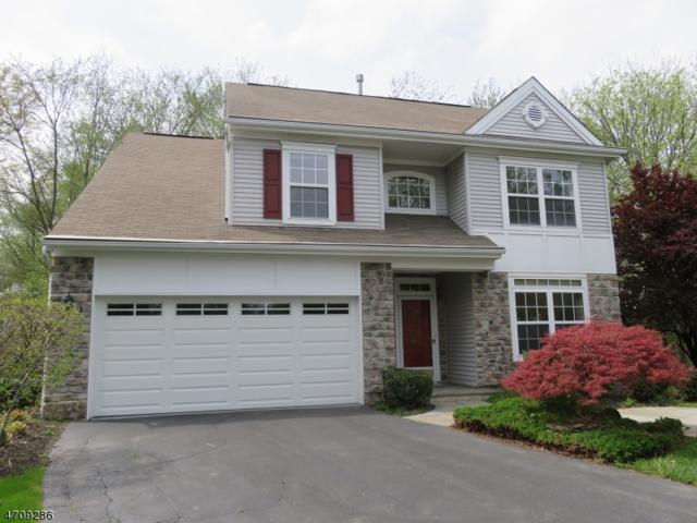 21 Cambridge Ct, Montgomery Twp., NJ 08540 (MLS #3383398) :: The Dekanski Home Selling Team