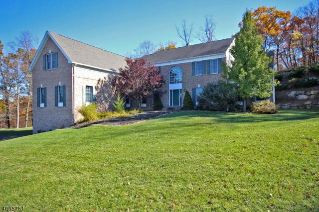 42 Morgan Dr, Sparta Twp., NJ 07871 (MLS #3383444) :: The Dekanski Home Selling Team