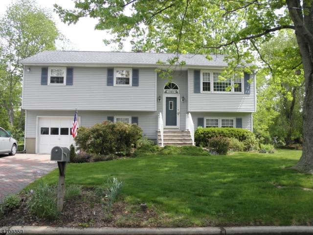 183 Chestnut St, Bridgewater Twp., NJ 08807 (MLS #3383445) :: The Dekanski Home Selling Team
