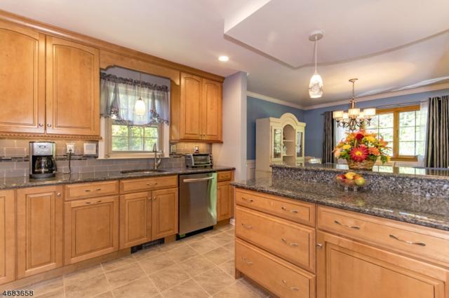 52 River Rd, Byram Twp., NJ 07874 (MLS #3383673) :: The Dekanski Home Selling Team