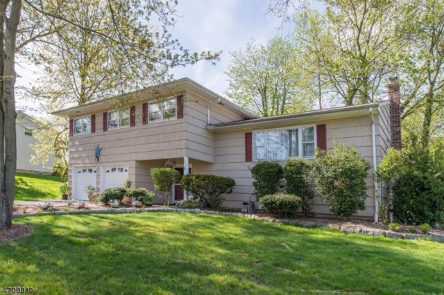 206 Marc Blvd, Boonton Town, NJ 07005 (MLS #3383792) :: The Dekanski Home Selling Team