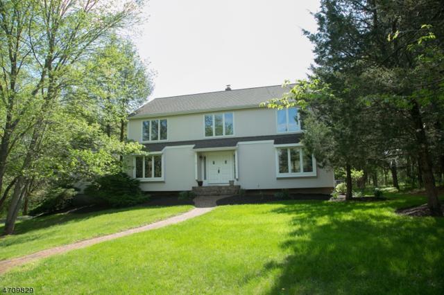 10 Dartmouth Rd, Clinton Twp., NJ 08801 (MLS #3383918) :: The Dekanski Home Selling Team
