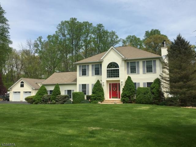 15 Alpine Drive, Knowlton Twp., NJ 07832 (MLS #3383940) :: The Dekanski Home Selling Team