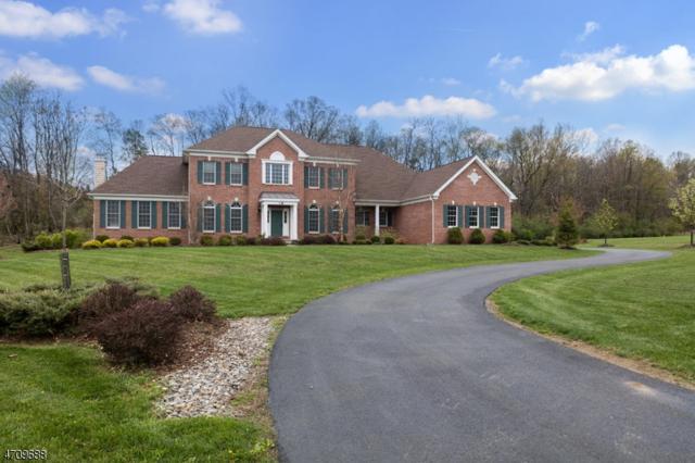 18 High Ridge Ln, Frankford Twp., NJ 07822 (MLS #3384128) :: The Dekanski Home Selling Team