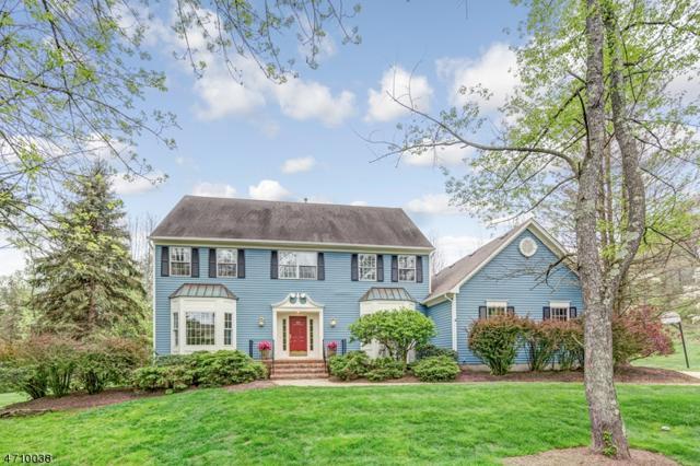 12 Charter Ct, Bernards Twp., NJ 07920 (MLS #3384143) :: The Dekanski Home Selling Team