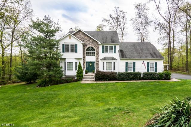 1 Cardinal Lane, Mount Olive Twp., NJ 07828 (MLS #3384412) :: The Dekanski Home Selling Team