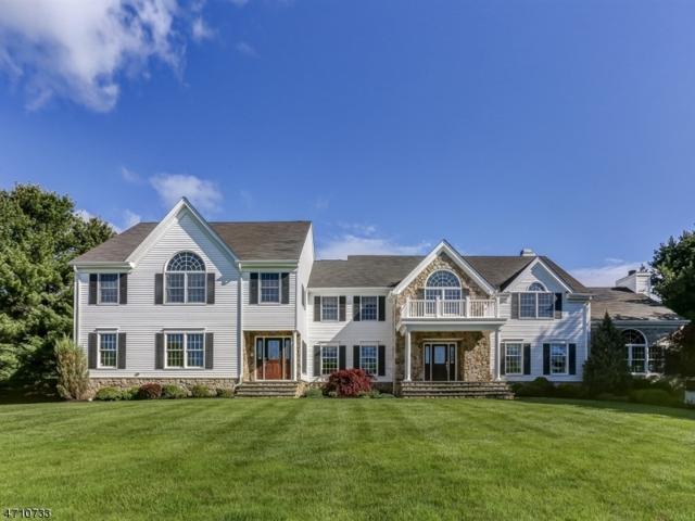 5 Squire Hill Rd, Washington Twp., NJ 07853 (MLS #3384825) :: The Dekanski Home Selling Team