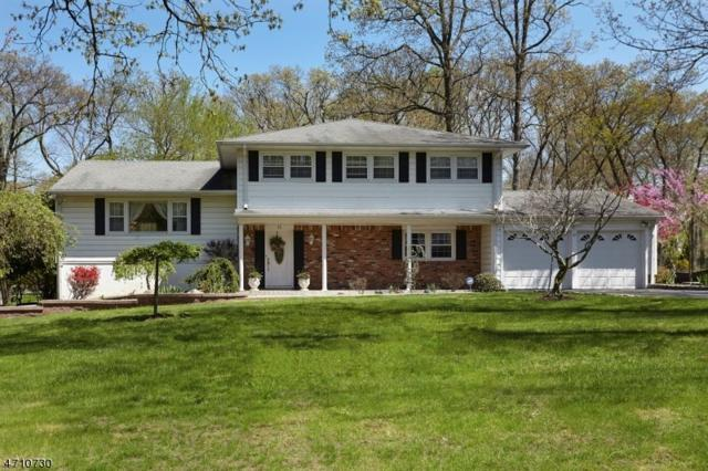 32 Douglas Dr, Montville Twp., NJ 07082 (MLS #3384829) :: The Dekanski Home Selling Team