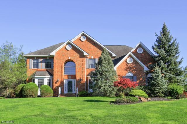 20 Sugarwood Way, Warren Twp., NJ 07059 (MLS #3384934) :: The Dekanski Home Selling Team