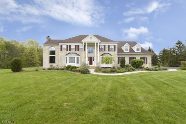 5 Runyon Dr, Bernards Twp., NJ 07920 (MLS #3384952) :: The Dekanski Home Selling Team