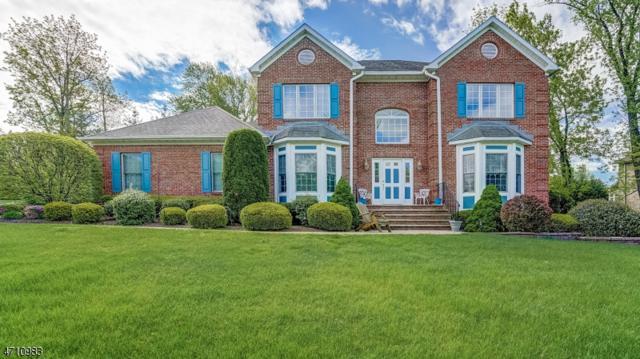 1 Nathan Dr, Montville Twp., NJ 07082 (MLS #3385202) :: The Dekanski Home Selling Team