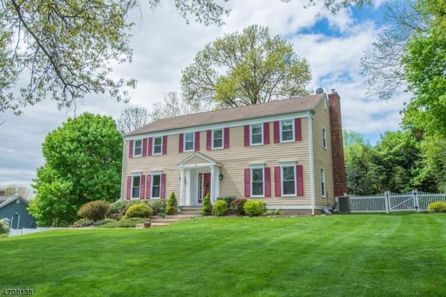 4 Seward Pl, Chester Boro, NJ 07930 (MLS #3385235) :: The Dekanski Home Selling Team