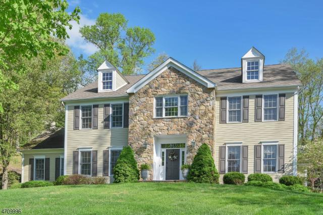 3 Connet Ln, Mendham Twp., NJ 07945 (MLS #3385255) :: The Dekanski Home Selling Team