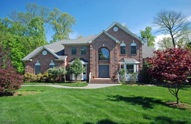 18 Schindelarwoods Way, Warren Twp., NJ 07059 (MLS #3385269) :: The Dekanski Home Selling Team