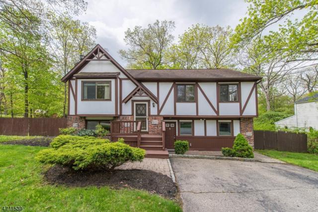 4 Belton St, Byram Twp., NJ 07874 (MLS #3385530) :: The Dekanski Home Selling Team
