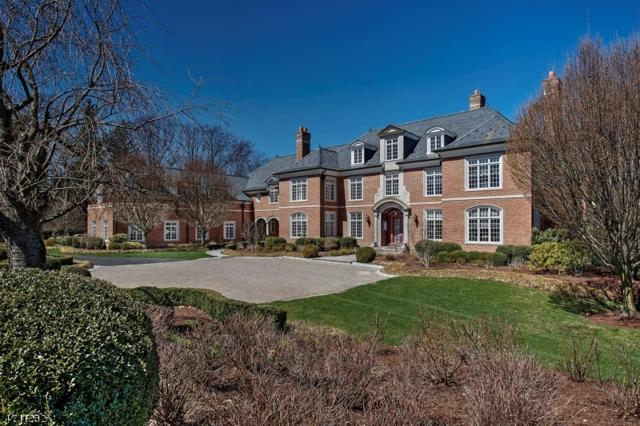 141 Mountain Top Rd, Bernardsville Boro, NJ 07924 (MLS #3385572) :: The Dekanski Home Selling Team
