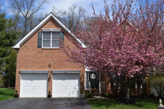 58 Ramapo Dr, Bernards Twp., NJ 07920 (MLS #3385712) :: The Dekanski Home Selling Team