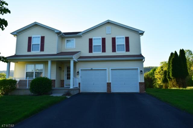 66 Alvin Sloan Ave, Washington Boro, NJ 07882 (MLS #3385787) :: The Dekanski Home Selling Team