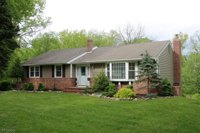 4 Hills Top Ct, Clinton Twp., NJ 08801 (MLS #3385859) :: The Dekanski Home Selling Team