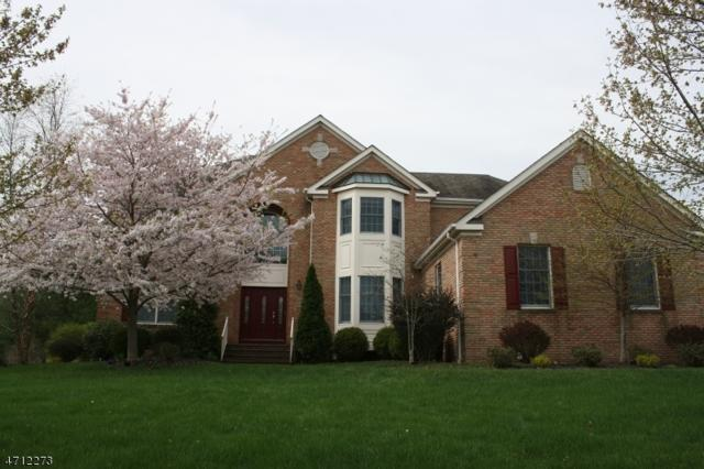 11 Derby Chase Ct, Montgomery Twp., NJ 08502 (MLS #3386160) :: The Dekanski Home Selling Team