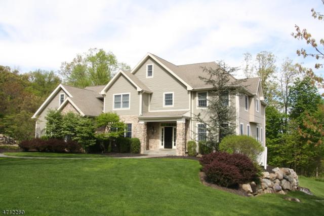 22 Amira Ln, Kinnelon Boro, NJ 07405 (MLS #3386417) :: The Dekanski Home Selling Team