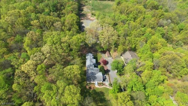 209 Locktown-Serg Rd, Delaware Twp., NJ 08822 (MLS #3386576) :: The Dekanski Home Selling Team