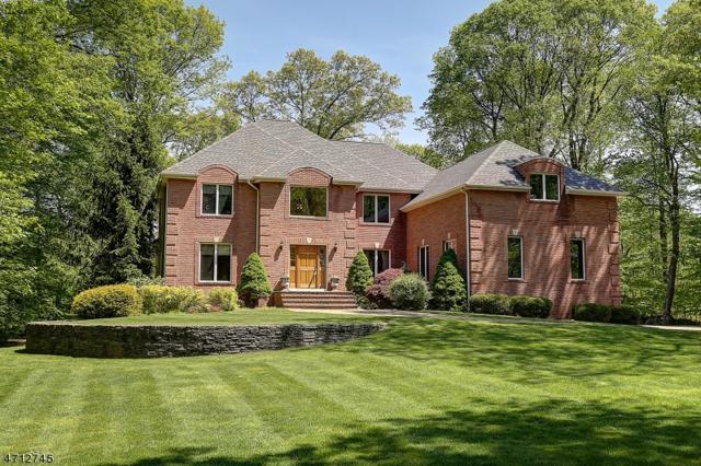 3 Elshaer Ct, Randolph Twp., NJ 07869 (MLS #3386670) :: The Dekanski Home Selling Team