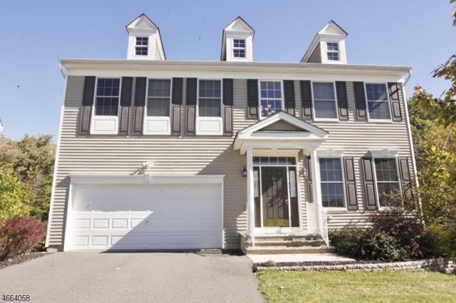 46 Helms Mill Rd, Hackettstown Town, NJ 07840 (MLS #3386777) :: The Dekanski Home Selling Team