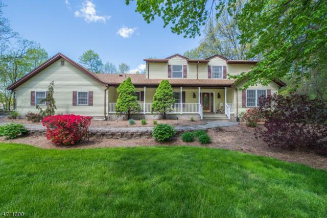 116 Boonton Ave, Kinnelon Boro, NJ 07405 (MLS #3386952) :: The Dekanski Home Selling Team