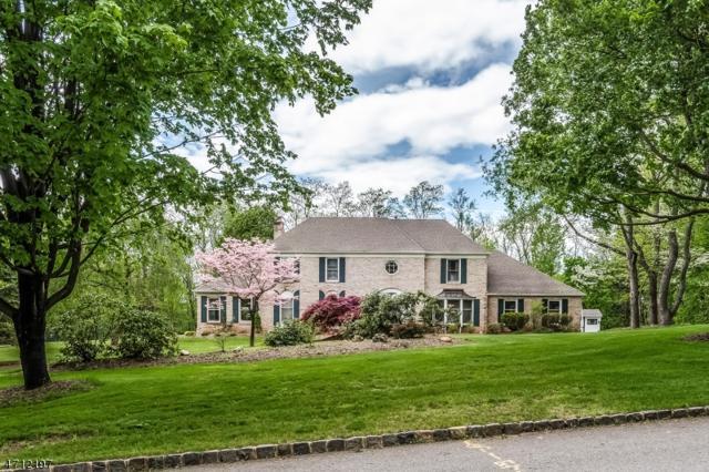 25 Edgewood Rd, Branchburg Twp., NJ 08853 (MLS #3386991) :: The Dekanski Home Selling Team