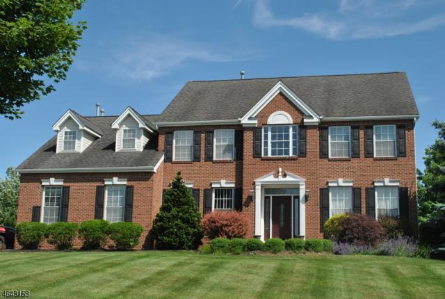 21 Meadowview Dr, Lopatcong Twp., NJ 08865 (MLS #3387045) :: The Dekanski Home Selling Team
